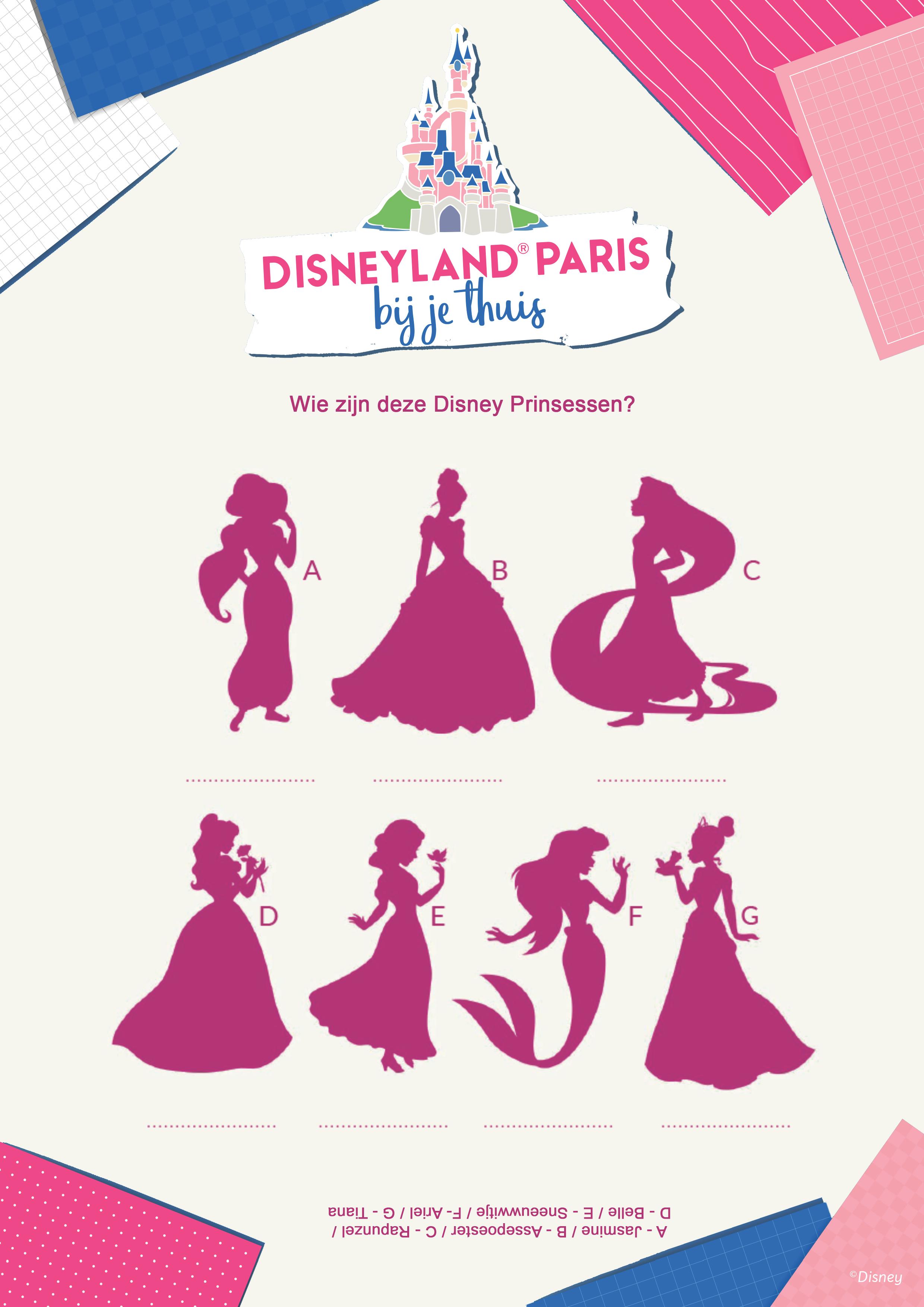 Wie zjin deze Disney Princessen